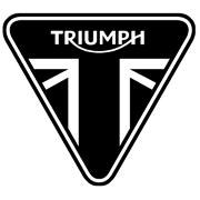 Spuitbus TRIUMPH MOTOR (150ml)