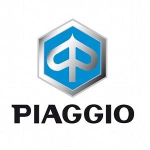 Lakpen PIAGGIO MOTOR (10ml) PD1601 t/m XB