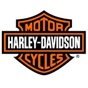 Lakstift HARLEY DAVIDSON MOTOR (10ml)
