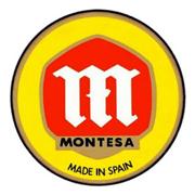 Lakstift MONTESA MOTOR (10ml)